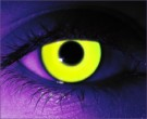 Rave Yellow Contact Lenses